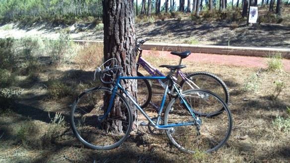 bicicletando em moel